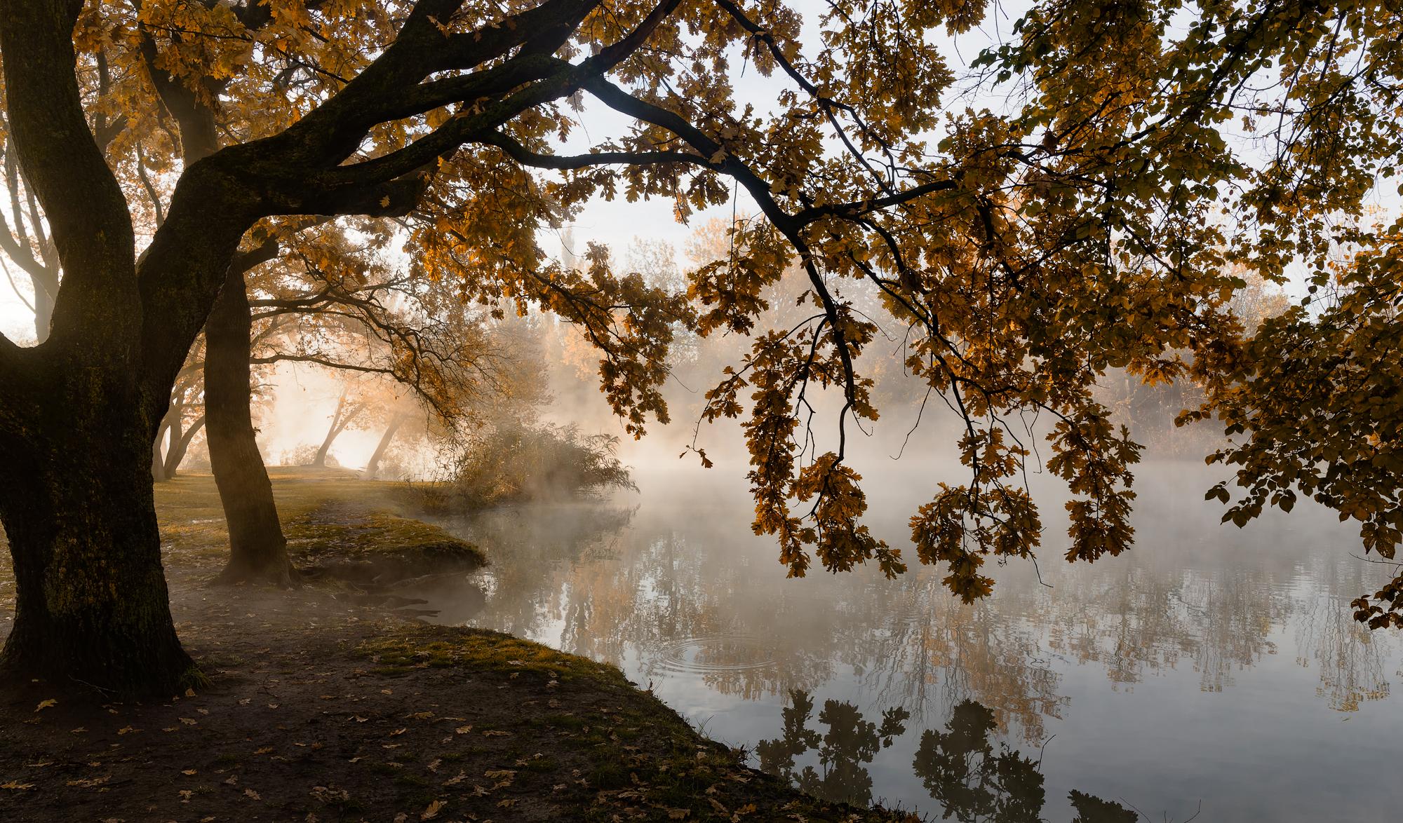 Утро пейзажного фотографа Александр Плеханов
