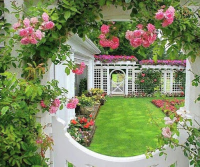 15 цветочных спецэффектов для сада