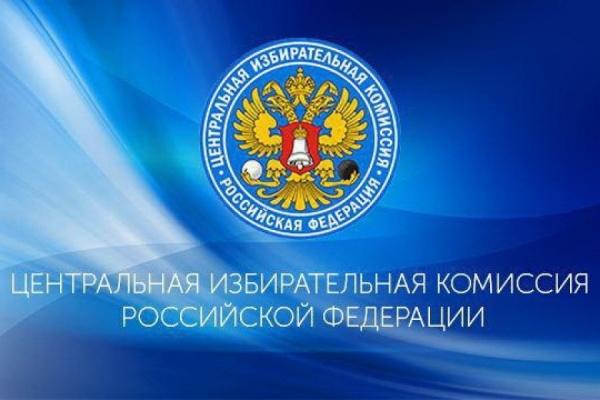ВЦИК России раскритиковали работу избиркомов Петербурга