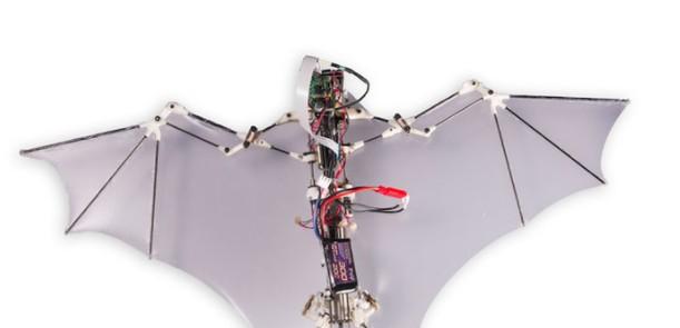Дроны в виде летучих мышей, питаемые лазерным лучом