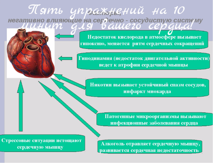 "alt=""Пять упражнений на 10 минут для вашего сердца!""/2835299_Pyat_yprajnenii_na_10_minyt_dlya_vashego_serdca (700x535, 287Kb)"