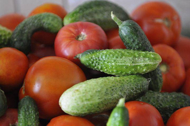 За границей перестали покупать украинские огурцы и томаты