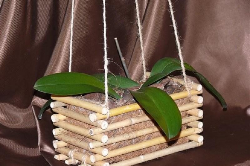 Горшки для орхидей своими руками 46