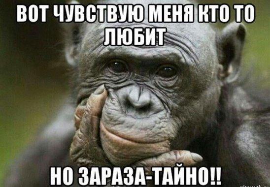 Жена офицера говорит мужу: — Почему ты на мне женился, дорогой?…