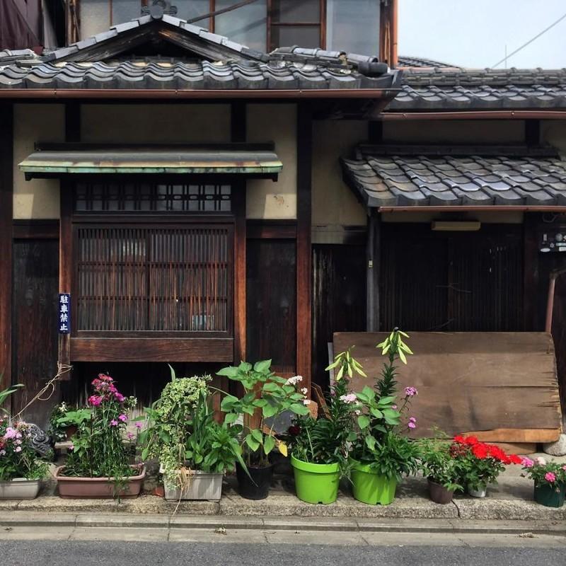 Сад в горшках архитектура, дома, здания, киото, маленькие здания, местный колорит, фото, япония