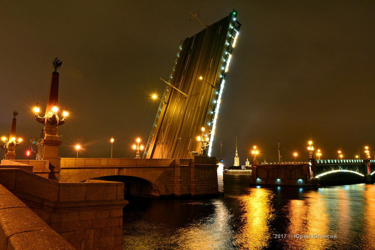 квартир оазвод мост санк петербург мой внук