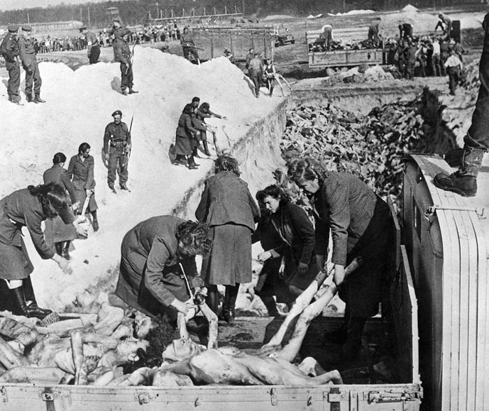 Зверства нацистов в концлагерях. | Фото: geourdu.com.