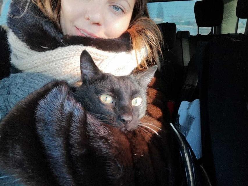 Пропавший кот нашелся, но хозяева сомневались, что это он. А однажды они пришли домой и увидели открытый шкаф