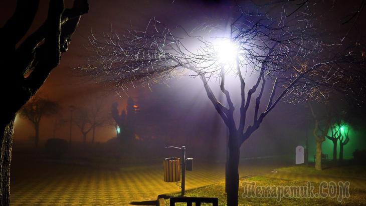 Туманность мартовской ночи