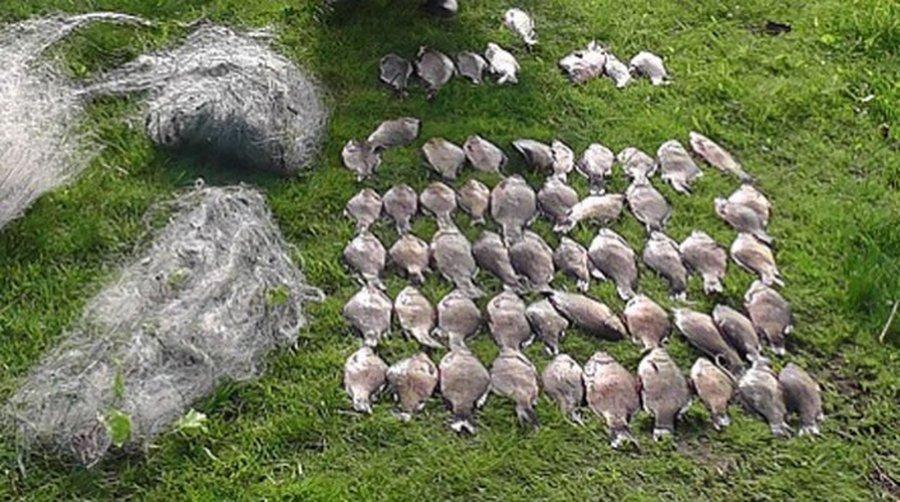 где можно ловить карася в челябинской области