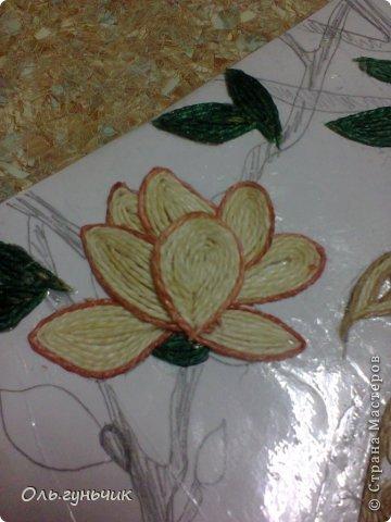 Картина панно рисунок Мастер-класс Моделирование конструирование Филигранный павлин МК Шпагат фото 29