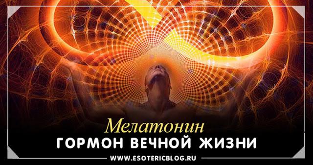 Мелатонин - гормон вечной жизни