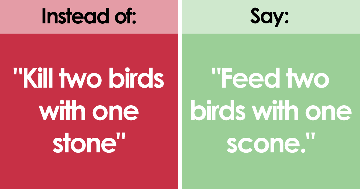 PETA Demands People To Stop Using These 6 'Anti-Animal' Phrases