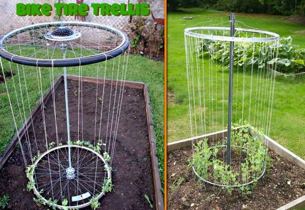 24-Highly-Creative-and-Clever-Gardening-Tricks-to-Enhance-Garden-homesthetics-decor-11