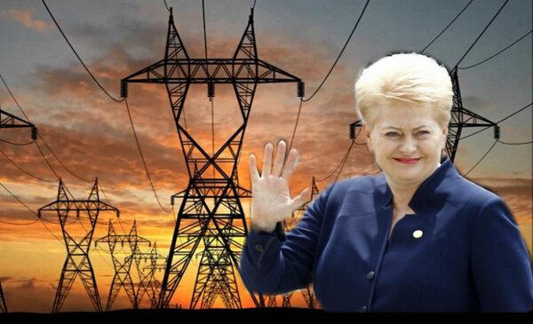 В Литве опасаются, что Росси…