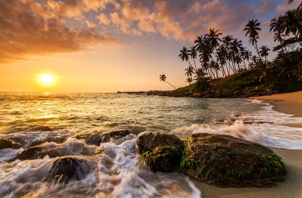 Шри-Ланка планирует выдачу бесплатных виз туристам из 30 стран