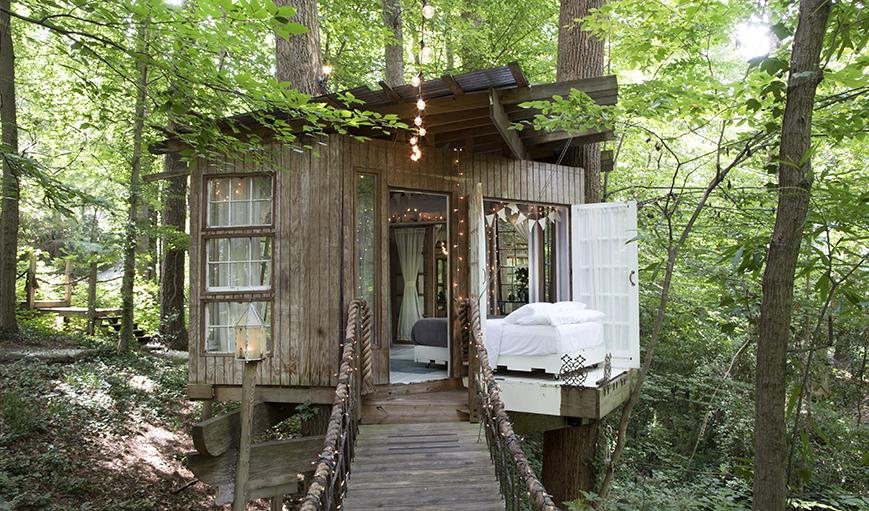 Самый популярный дом: Treehouse