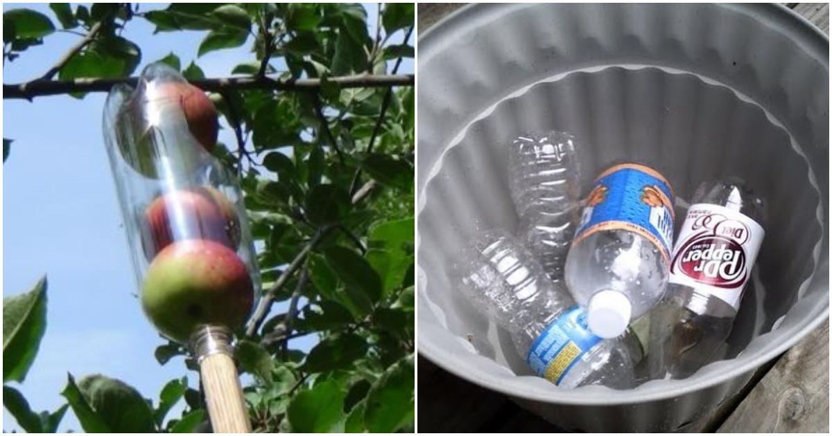 9 гениальных способов использовать старые пластиковые бутылки