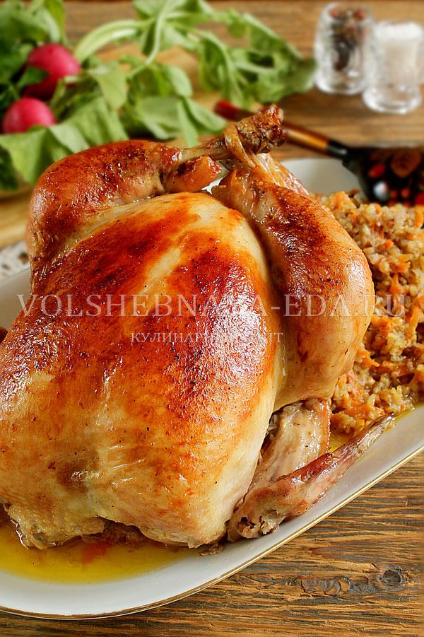 Курица фаршированная гречкой рецепт фото