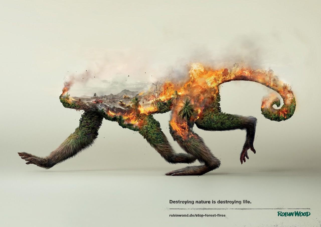 «Уничтожая природу, уничтожаешь жизнь»