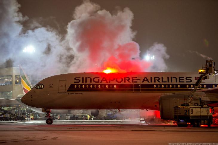 Новогодне самолеты в Домодедово