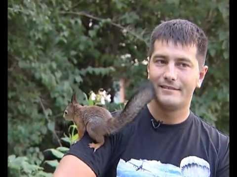 Белка в такси: белорусский десантник приютил бельчонка. Удивительная дружба!