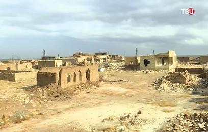 Россия продолжает доставлять гумпомощь в сирийские деревни