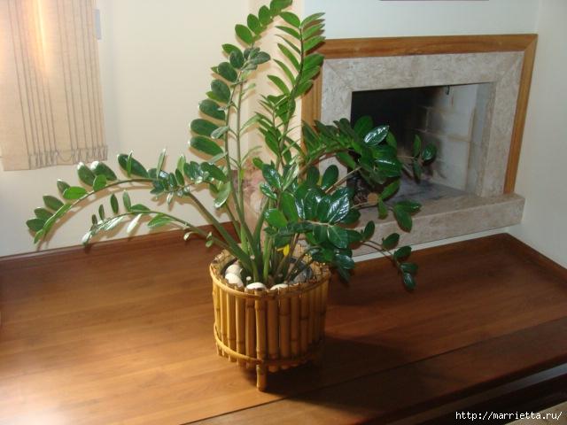 Бамбуковые фантазии для интерьера
