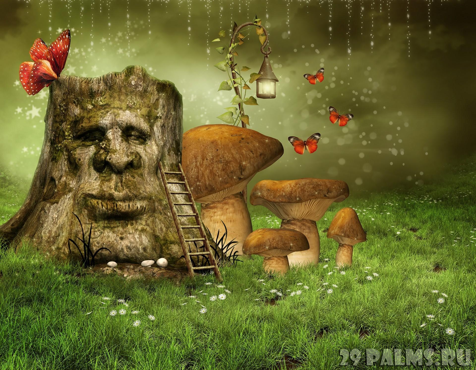 Image result for 19 волшебных леÑов