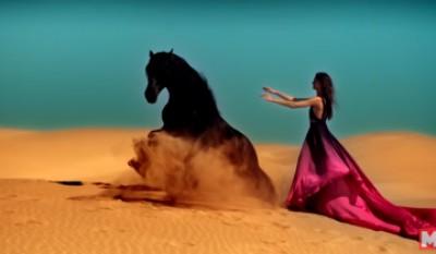 10 красивейших и необычных пород лошадей