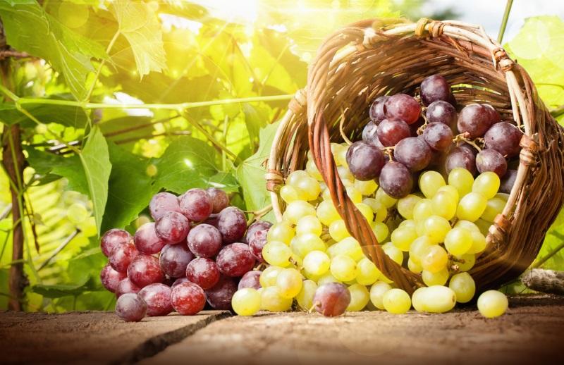 как замариновать виноград в банках