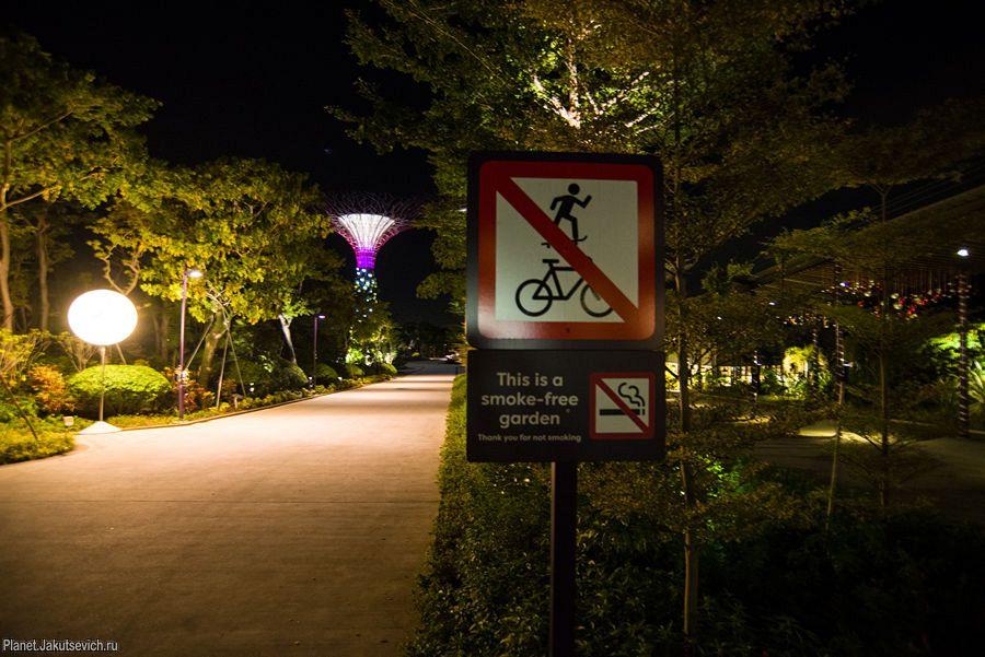 Сады у залива в Сингапуре – Gardens by the Bay