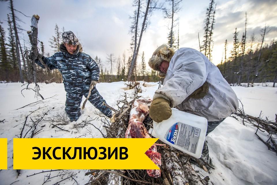 Автор российского реалити-шо…