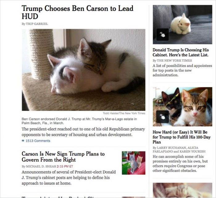 New Google Chrome Extension Replaces All Images Of Donald Trump With Kittens