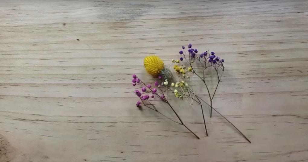 У вас есть сухоцветы? Только…
