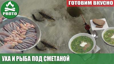 Готовим вкусно. Уха и рыба под сметаной