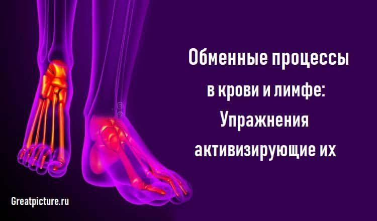 Обменные процессы в крови и лимфе:Упражнения активизирующие их