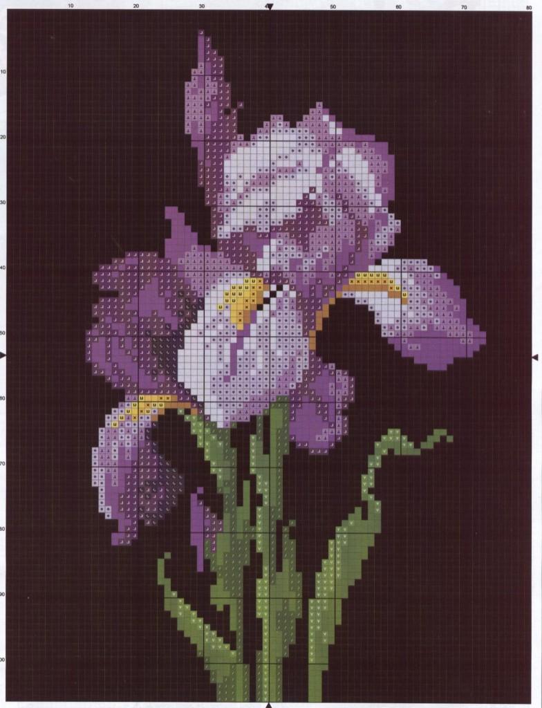 Вышивка ирисы схемы фото