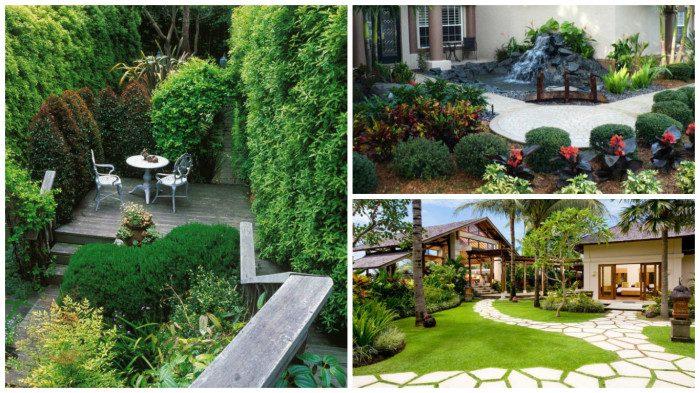 Яркие идеи оформление сада