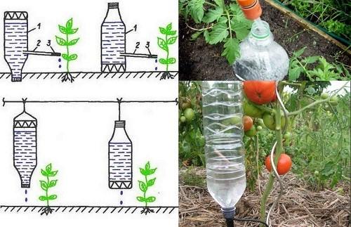 Как сделать капельный полив своими руками из бутылок