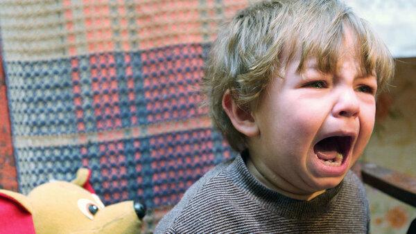 Детские инкубаторы или на традиционную семью объявлена охота. Карельская война. Завтра по всей стране?