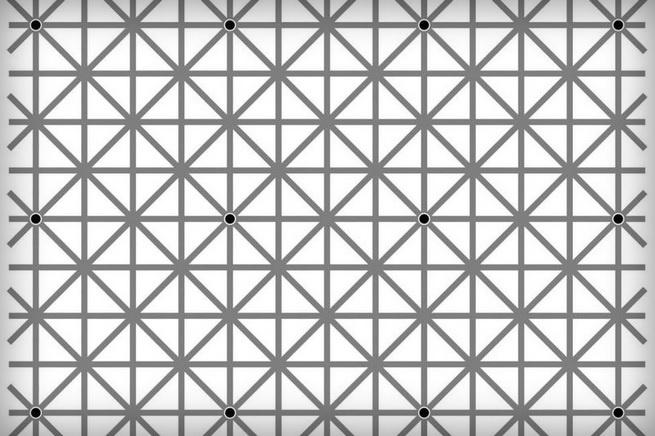 Оптическая иллюзия: сколько …