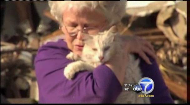 Кошка, пропавшая после урагана в Алабаме, вернулась домой (+видео)