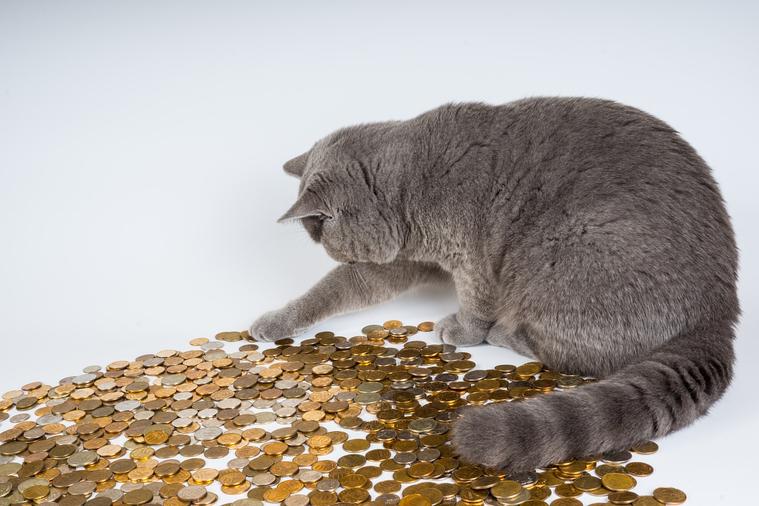 Центробанк сказал, когда вырастут реальные доходы россиян. Прогноз воодушевляет