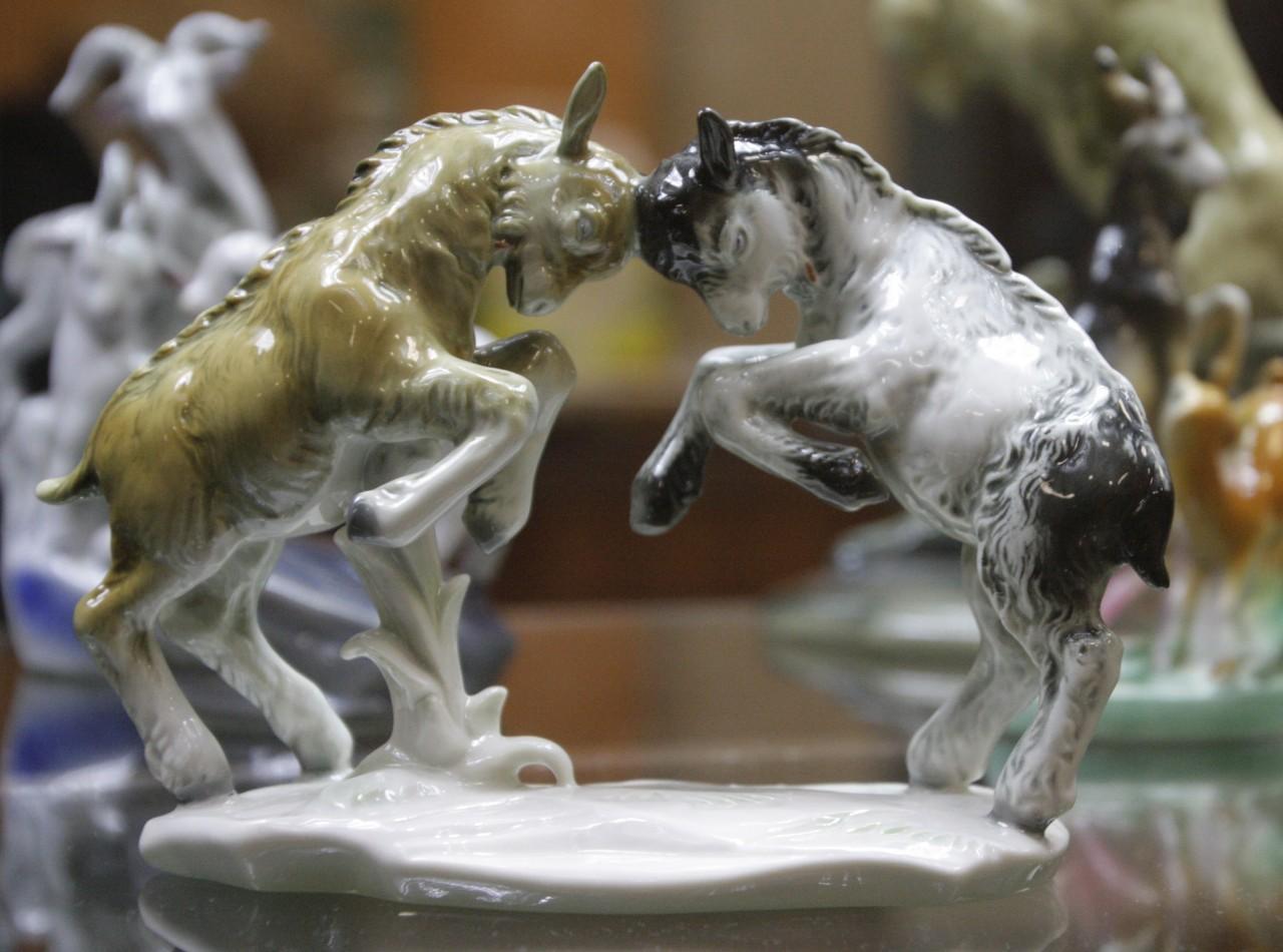 Выставка «Козёл – животное гордое» - отчёт.