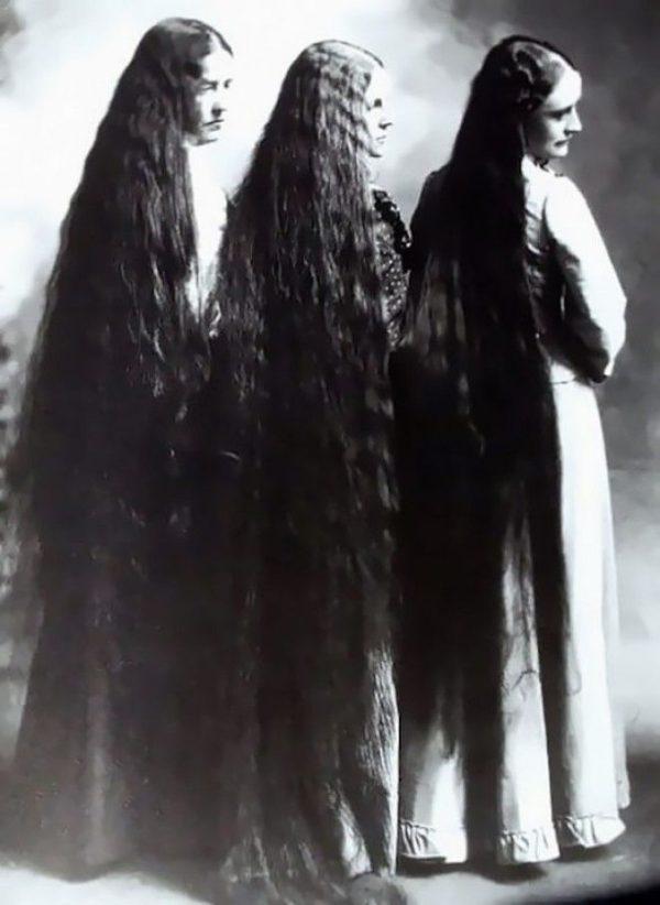 Волосы длиною в жизнь: почем…