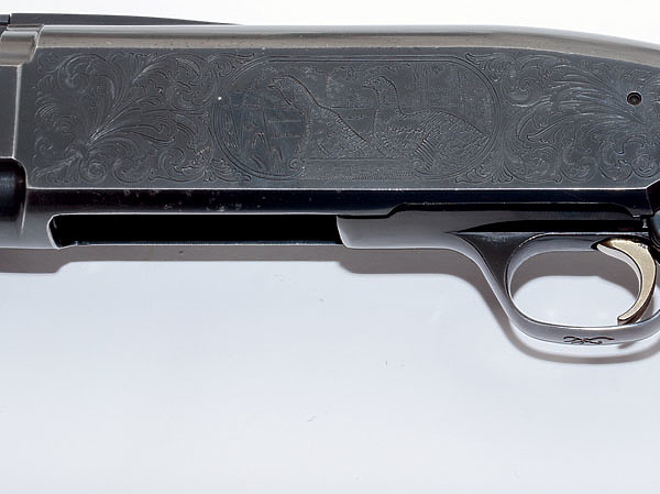 Помповое оружие для охоты: секрет популярности