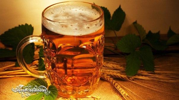 Используем пиво в домашнем хозяйстве - полезные советы