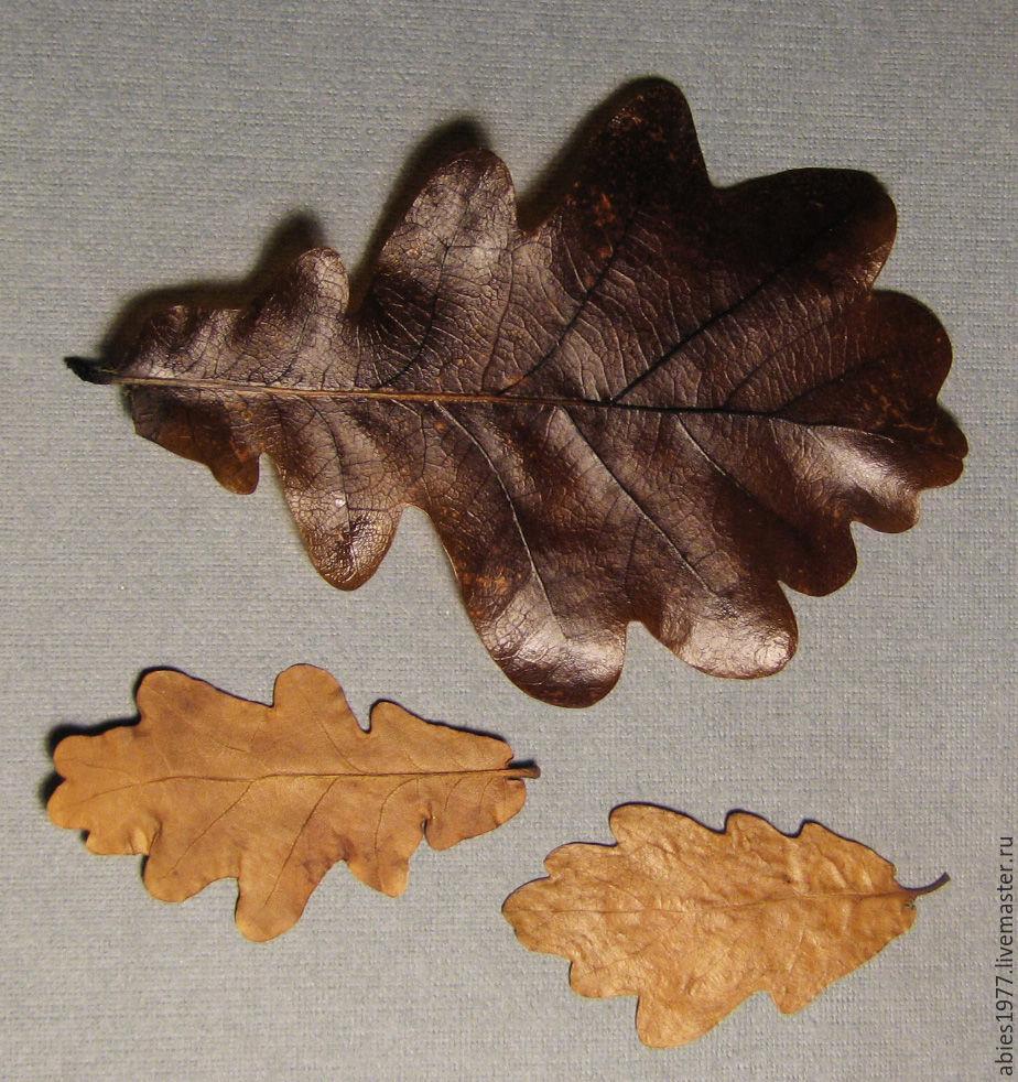 Листья в глицерине своими руками мастер класс 94