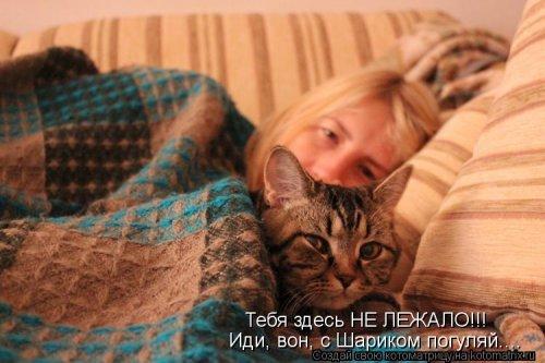 Свежий сборник котоматриц